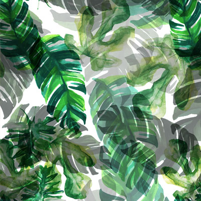 tropics-square